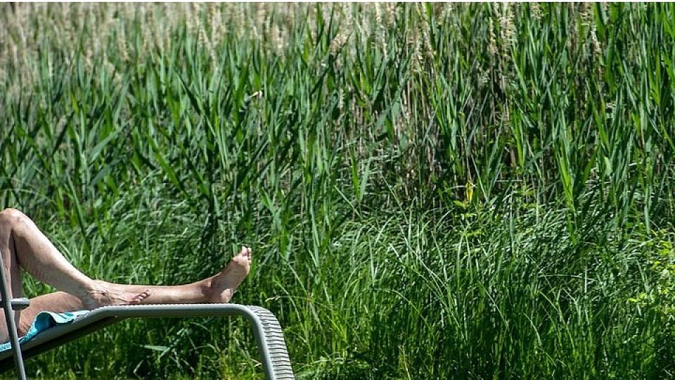 Nackt im Garten: Mann verliert Sauna-Prozess und muss