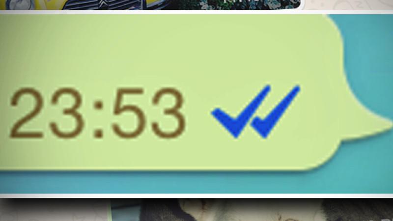whatsapp blaue haken version