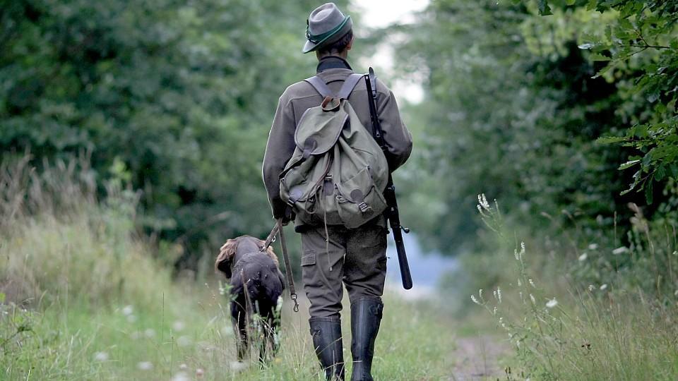 Jäger erschießt seinen Hund: